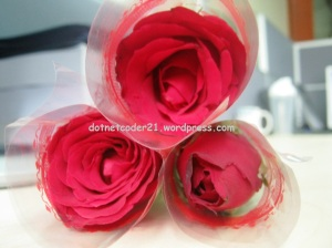 ♥ Roses are Red ♥